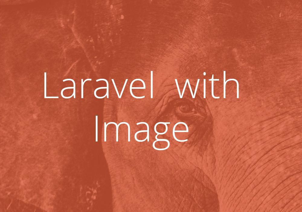 التعامل بشكل احترافي مع الصور في الارافيل